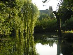 Les Glycines, 1, rue de l'Abbaye, 18340, Plaimpied-Givaudins