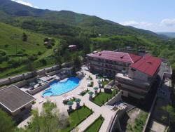 Aghveran Ararat Resort Hotel, Kotayk district, Antarain Street 11, 2503, Arzakan