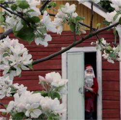 Joulupukin piilopirtti, Kenkävero Pursialankatu 6, 50100, Mikkeli