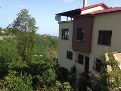 Arsin Villa, Dere Sokak, Arsin Işıklı Mahallesi No:15, Trabzon, 61040, Арсин
