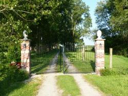 Paardenhof Guesthouse, 25 Rue Arneke, 59470, Esquelbecq