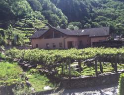 La Casina, Nucleo, 6678, Giumaglio