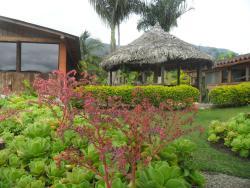 Finca Hotel Riomanso, Vereda Pringamosal, Finca Hotel Riomanso, 056837, Urrao