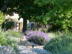 Couleur Lavande, 2056 Route des Vignères, 84250, Le Thor
