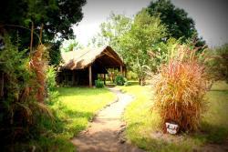 Udzungwa Forest Tented Camp, Mang'ula Kilombero Valley,, Kisawasawa
