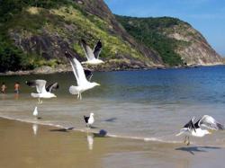Paraiso de Itaipu, Rua Vinte e Oito 274, 24342-805, Itaipu