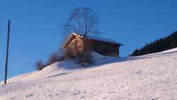 Ferienhütte Georg, Schwendberg 453, 6283, Hippach