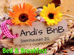 Andi's BnB, Beim Bahnhof 5, 6312, Steinhausen