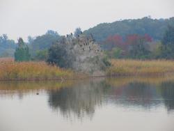 Mir Homestay, No. 1-6, Qingqi, Lieyu County., 89442, Lieyu
