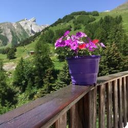 Le Sestriere, Route Du Col, 04260, La Foux