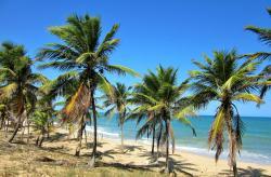 Pousada Praia de Santo Antônio, Praia de Santo Antônio, 48.282-970, Mata de Sao Joao