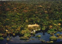 Amazon Village Jungle Lodge, Lago do Puraquequara s/n, 69057-000, Rio Preto Da Eva