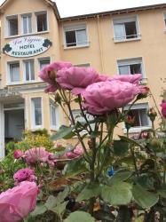 Hotel La Vigne, 4 Avenue des Fontaines, 86270, La Roche-Posay