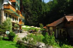 Naturidyll Hotel Hammerschmiede, Hammerschmied-Straße 9, 5102, Anthering