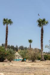 Palm House, Water Canal Service Road, Mandria, 8504, Mandria