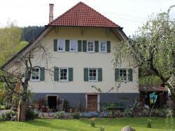 Haus am Bach, Welschensteinacher Straße 26, 77790, Steinach