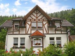 Apartment Stühlingen II,  79780, Lausheim