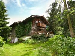 Holiday home Waldner - Thannrain Thannrain,  6410, Thannrain