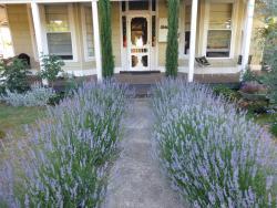La Maison St Arnaud, 16 Hunter Street, 3685, Rutherglen