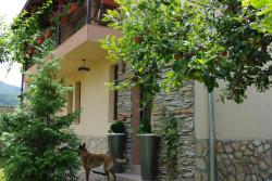 Guesthouse Viktoria, ul. Simon Nalbant 50, 4550, Peshtera