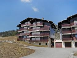 Apartment Les Maisons Des Bois Manigod,  74230, Manigod