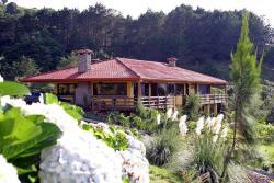 Central Valley Rainforest House, Al Final De Calle Leones,, San Isidro
