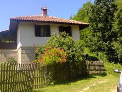 Villa Novakovic, Gornji Milanovac, 32304, Ozrem