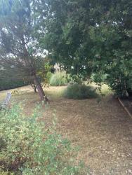 Le Paradisier, 29 Route du Billeau, 17920, Breuillet