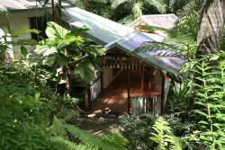 Daintree Secrets Rainforest Sanctuary, 61 Stonewood Road, 4873, Diwan