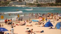 Bondi Beach Condo, 11/138 Campbell Parade Bondi Beach, 2026, Sydney