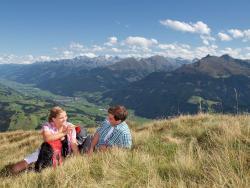 Residenz Hollersbach Top 14,  5731, Hollersbach im Pinzgau