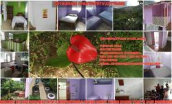 Anthurium Apartment, Wotten Waven,, Roseau