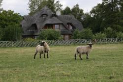 Toomalõuka Tourist Farm, Kopli talu, Toomalõuka küla, Salme vald, Saaremaa, 93261, Toomalõuka