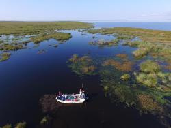 Ibera Estero Salvaje - Posada de Campo, Ruta Provincial Nº 40 km 85, 3470, Colonia Carlos Pellegrini
