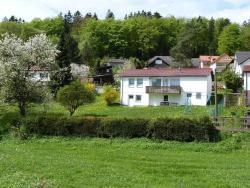 Ferienhaus am Gänserasen, Schwarzenbörnerstraße 10, 36280, Oberaula