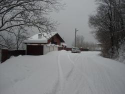 Villa Ani, road 5006, village Zeleno darvo, 5304, Zeleno Dŭrvo