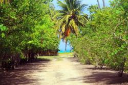 Pousada Borapirá, Sítio Mata da Praia - Povoado de Tatuamunha, 57945-000, Tatuamunha