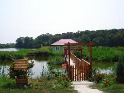 Casa Verde, Strada Valea Vlasiei 127 Comuna Gruiu, Sat Lipia,, 023635, Căldăruşani