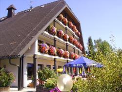 Schwarzwald Gasthof Sternen-Post, Kapellenstraße  11, 78199, Bräunlingen