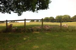 The Little Granary, Rockbourne, Fordingbridge, The Little Granary, West Park Farm, SP6 1QG, Rockbourne