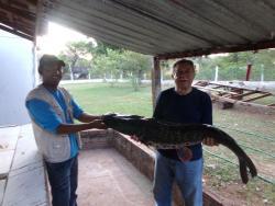 Pousada Caminhos do Pantanal, Rua Santa Izabel, S/Nº, 79300-000, Pôrto Manga