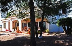 Casa Del Artista Bed & Breakfast, Partida Saladas, P2 135A, 03295, Elche