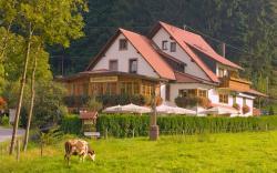 Gasthaus - Pension Hohberg, Hohenberg 11, 77770, Durbach