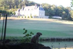 Château d'Hodebert, Château d'Hodebert, 37370, Saint-Paterne-Racan