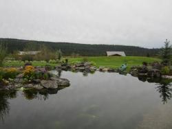 Kinikinik Cottages, 9391 Highway 20, V0L 1S0, Redstone