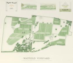 Mayfield Vineyard, 954 Icely Road, 2800, Orange