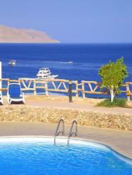Sharks Bay - Beachfront Elite Apartment, Sharks Bay Oasis 4 , 99999, Sharm El Sheikh