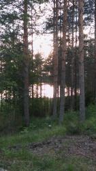 Karkausmäen Kammari, Lestijärventie 375, 43900, Kinnula