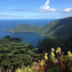 Mahogany Ridge, Fond Pois Doux Road, North Coast, Trinidad,, La Finette