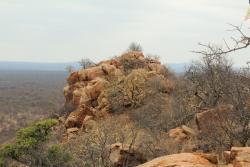 Bivack Bush Safari, Bivack Bush Safari R572, Alldays, Limpopo, 0909, Tokio